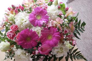 花のクローズアップの写真・画像素材[3077081]