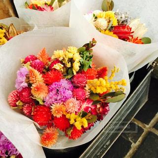 色とりどりの花たちの写真・画像素材[1880195]