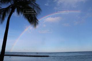 虹の写真・画像素材[1880573]