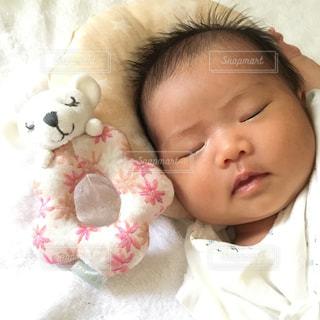 新生児の寝顔の写真・画像素材[1880615]
