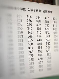 合格発表の写真・画像素材[2926675]
