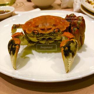 上海蟹の写真・画像素材[2046490]