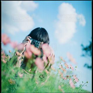 秋桜と空と少女の写真・画像素材[1882176]