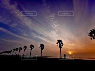 黄昏時、私の好きな場所❣️の写真・画像素材[2512449]