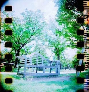 自然の写真・画像素材[68167]