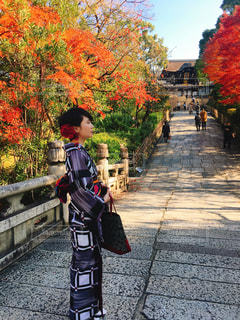 着物で京都散策の写真・画像素材[1894327]