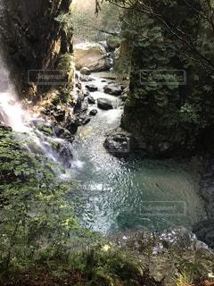 森の中の大きな滝の写真・画像素材[2366330]