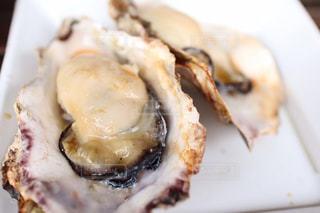 広島の牡蠣の写真・画像素材[1917261]