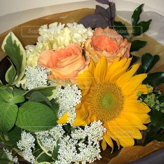 黄色い花の束の写真・画像素材[2189842]