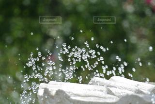 噴水の写真・画像素材[1899158]