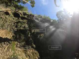 森の中に現れた滝の写真・画像素材[1910817]
