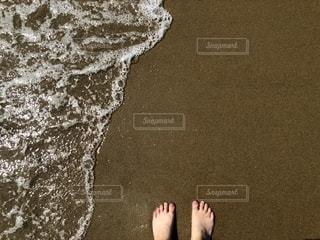 夏!海だーの写真・画像素材[1994448]