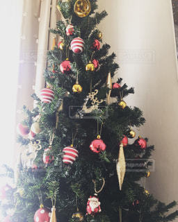 お家クリスマスツリー。朝の日差しに浴びたツリーも綺麗ですの写真・画像素材[1907425]