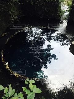湧き水の写真・画像素材[1943020]