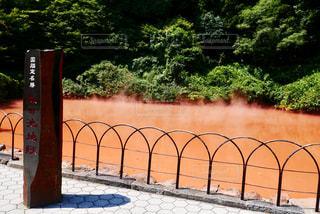 別府地獄めぐり「血の池地獄」の写真・画像素材[2010107]