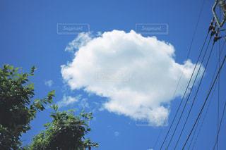 夏空の写真・画像素材[2166851]