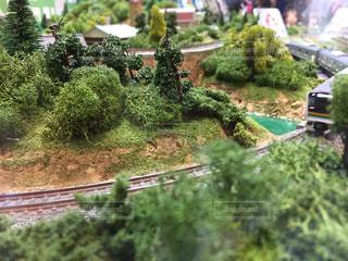 クローズ アップ庭園のの写真・画像素材[865020]