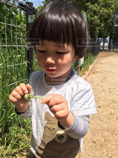 小さな男の子が赤ん坊を保持の写真・画像素材[865054]