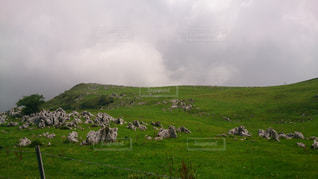 四国カルストの写真・画像素材[2008350]