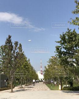 風景 - No.275450