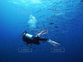 海の写真・画像素材[350870]