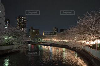 春 - No.350911