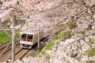 風景 - No.350912