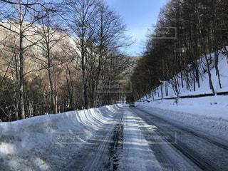 冬 - No.350950