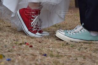 結婚の写真・画像素材[1911049]