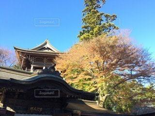 神社の写真・画像素材[67467]