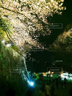 夜景の写真・画像素材[405731]