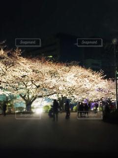 夜景の写真・画像素材[405733]