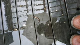近くに傘のアップの写真・画像素材[1898617]