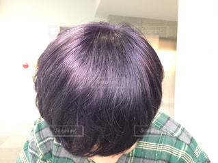 紫キャベツの写真・画像素材[1930186]
