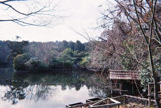木々に囲まれた水の体に架かる橋の写真・画像素材[2126751]
