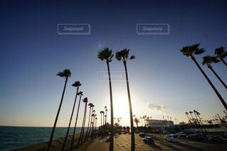 sunset Blueの写真・画像素材[1951531]