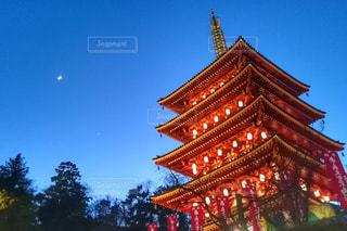 夜の神社にそびえる五重塔の写真・画像素材[1008952]