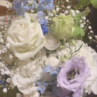 綺麗な花束の写真・画像素材[1889549]