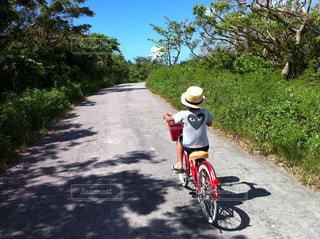 cycling @ taketomiの写真・画像素材[1908986]