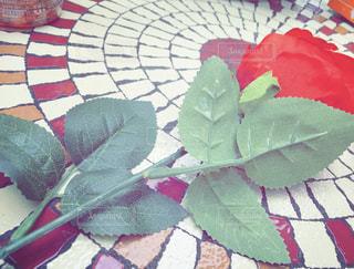 薔薇の写真・画像素材[1910212]