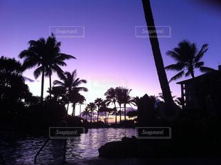 紫色の夕暮れのプールサイドの写真・画像素材[1982257]