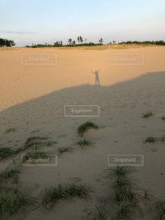 夕日を後ろに砂丘に映る自分の写真・画像素材[2330555]