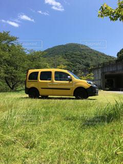 芝生のフィールドで駐車している黄色のカングーの写真・画像素材[1905573]