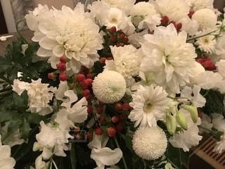 近くの花のアップの写真・画像素材[1892606]