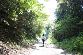 森の中の土の道を歩いて女の写真・画像素材[1912455]