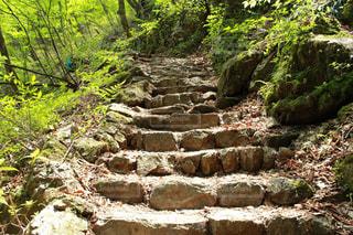 石の階段の写真・画像素材[2070464]