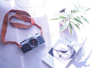 差し込む午後の光の写真・画像素材[2189402]