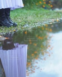 秋を映す足元の写真・画像素材[2771037]