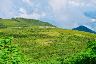山を背景にした大きな緑の野原の写真・画像素材[2289158]