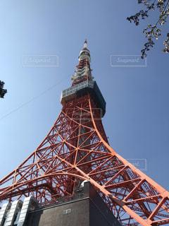 東京タワーの写真・画像素材[1905802]
